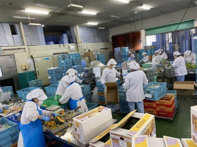 ハーベスト株式会社 ヨシケイ湘南加工の画像・写真